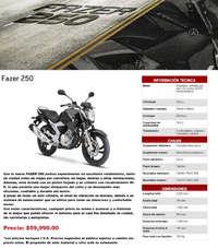 FZ Series Fazer 250