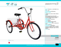 City Bike Benotto