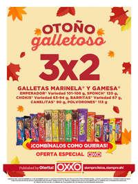 Otoño Galletoso - GUADALAJARA